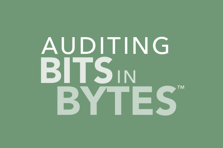 auditing-bits-in-bytes