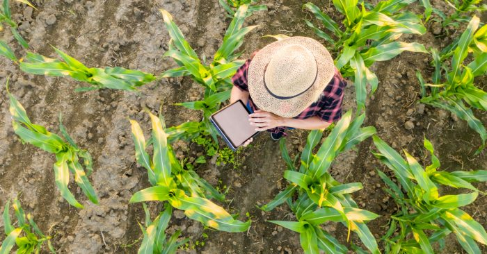 The Case for Joining the MSBA Agricultural Law Section